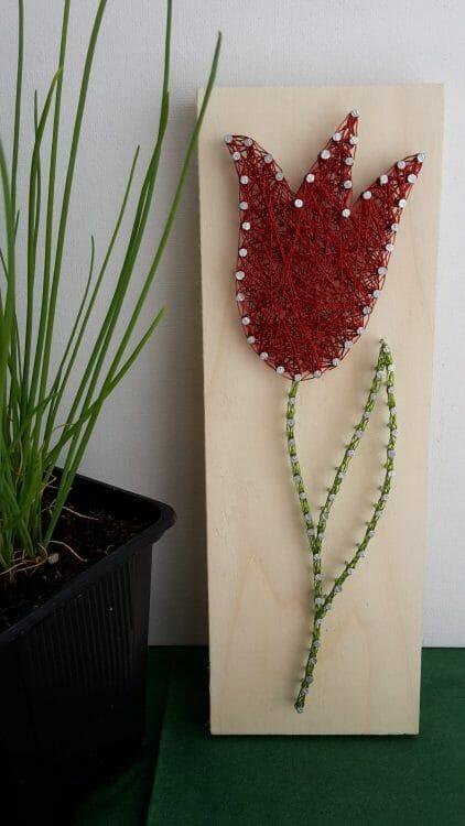 Červený tulipán – Drôtom vypletaný obraz